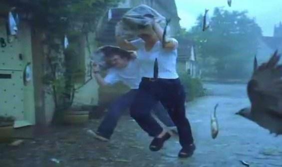 fish-rain-in-phillipines