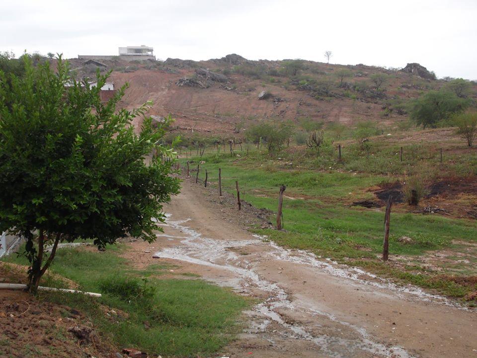 Boas chuvas caíram em Jucurutu de sexta para sábado. Veja alguns registros da região